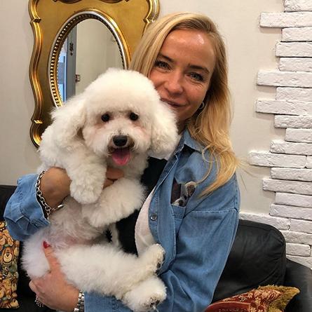 Стрижка собак, груминг в Москве