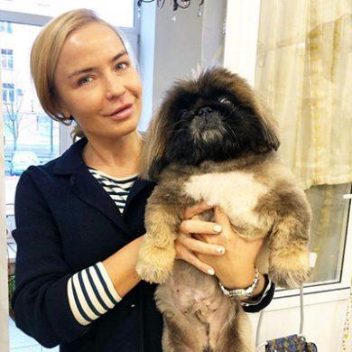 Зоосалон стрижки собак и кошек в Москве